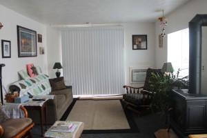 1070-n-6th-livingroom