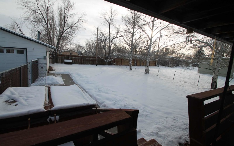 2401-cottonwood-backyard