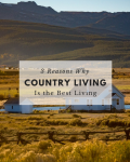 3 Reasons Why Country Living is the Best Living