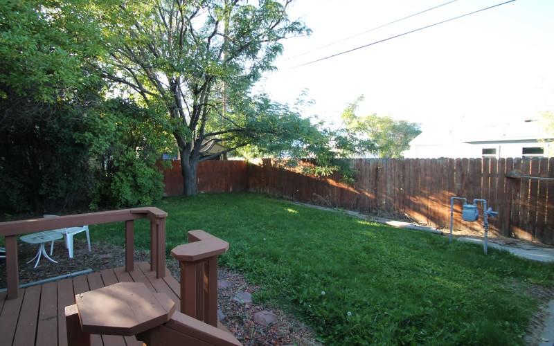 422-pine-backyard