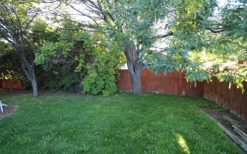 422-pine-yard