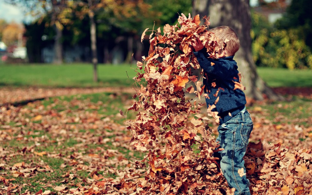 3 Great Reasons to Buy a Home This Fall